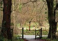 Gate and trees near Edenderry, Belfast - geograph.org.uk - 1639462.jpg