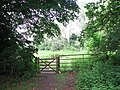 Gate into Claxton Marsh - geograph.org.uk - 1358543.jpg
