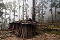 Gauri Sankar, Nepal - panoramio.jpg