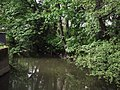 Gdańsk - Kanał Radunia - panoramio (1).jpg