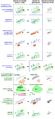 Generalisatie grafisch en conceptueel.PNG