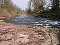 Gentle rapids on the Usk-Wysg - geograph.org.uk - 385441.jpg