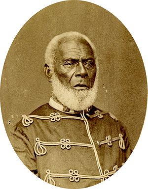 Tonga - Tāufaʻāhau, King of Tonga (1845–1893)
