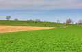 Gfp-farmland-with-cows-in-the-distance.jpg