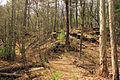Gfp-wisconsin-rocky-arbor-state-park-path-up-a-hill.jpg