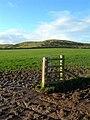 Glaury Gate - geograph.org.uk - 623040.jpg