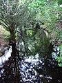 Glendalough valley - 2.jpg