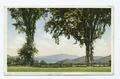 Glimpse of Mt. Washington, Intervale, N.H (NYPL b12647398-69685).tiff