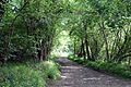 Good Easter, Essex, England - road next to ford over River Can east of Good Easter village.JPG