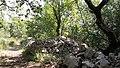 Gorges de l'Ardèche entre Lanas et Balazuc 15.jpg