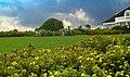 Grünewiese - panoramio.jpg