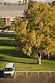 Grand Canyon University, Phoenix, Arizona - panoramio (54).jpg