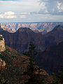 Grand Canyon Widforss trail. 05.jpg