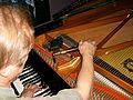 Grand piano tuning 01.jpg