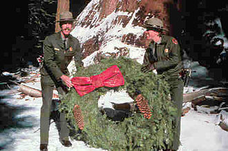 """General Grant (tree) - The tree is decorated as the """"Nation's Christmas Tree"""""""
