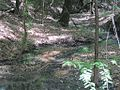 Great River Road Arkansas Phillips County AR 014.jpg