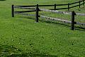 Green Grass (9708316138).jpg
