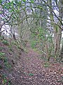 Green Lane, Stockbury - geograph.org.uk - 733402.jpg