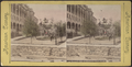 Grounds front of Thousand Island House, from Robert N. Dennis collection of stereoscopic views.png