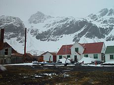 The ghost town of Grytviken with the Manager Villa turned into South Georgia Museum