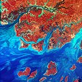 Guinea-Bissau (4404817866).jpg
