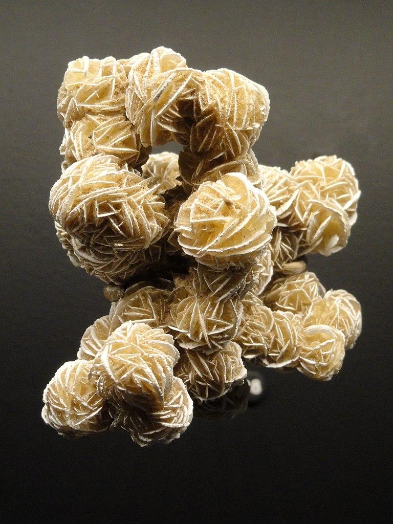 File Gypsum Desert Roses Chihuahua Mexico Natural