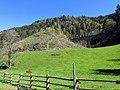 Höllenbahn Viaduckt - Ravenna Schlucht - Breitnau Schwarzwald - panoramio (2).jpg