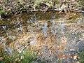H2O - panoramio (1).jpg