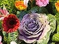 HKCL 香港中央圖書館 CWB 展覽 exhibition flowers February 2019 SSG 16.jpg