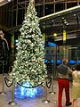 HK Central Landmark night Xmas tree Nov-2013 visitors.JPG