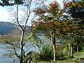 Hakone Ashinoko lake dsc05431.jpg