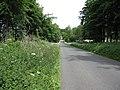 Half Rounds Plantation - geograph.org.uk - 1318473.jpg