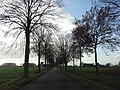 Hamm, Germany - panoramio (3707).jpg