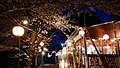 Hanami-jaya night 3.jpg