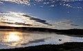 Hayden Valley - panoramio (3).jpg