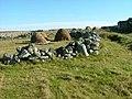 Haystacks at Arnol - geograph.org.uk - 575048.jpg