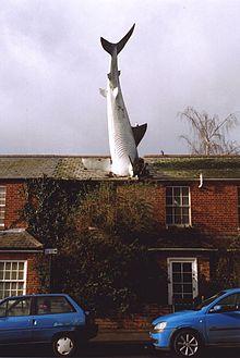 Primo piano dello squalo di Headington dopo la ristrutturazione del 2007.