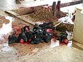 Heads of sacrificed goats at Tripura Sundari Temple.JPG