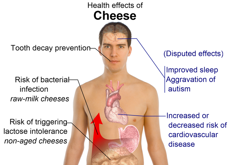 File:Health effects of cheese.png