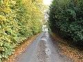 Heigholme Lane - geograph.org.uk - 1552271.jpg