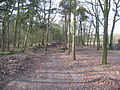 Helmondseweg Schietbaan nabij Barrier Rijtven-IMG 0003.JPG