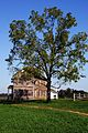 Henry House at Manassas Battlefield.jpg