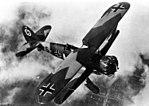 Henschel Hs 123 in flight.jpg