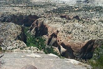 Utah State Route 12 - Image: Highway 12 2005
