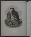 History of the birds of NZ 1st ed p000-2.jpg