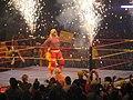 Hogan .jpg