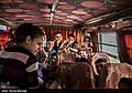 Homs 13970819 03.jpg