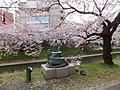 Honmachi, Toyama, Toyama Prefecture 930-0029, Japan - panoramio (1).jpg