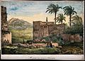 Hopital des Grecs and hilly grounds in Alexandria. Coloured Wellcome V0012146.jpg