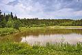 Horní rybník u obce Suchý, Velenov, okres Blansko (06).jpg